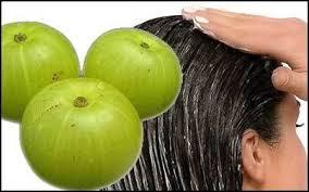 poudre d amla pousse de cheveux