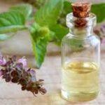 Les bienfaits pour la santé de l'huile essentielle de tulsi
