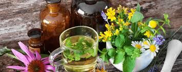 liste plantes médicinales