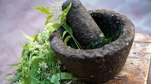groupement plantes medicinales vosges