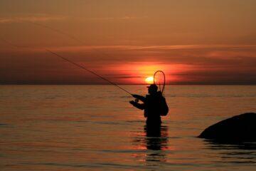 bienfaits de la pêche sur votre santé